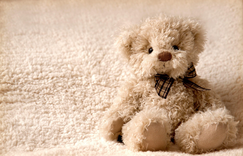 медвежонок Teddy