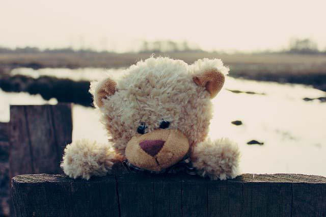 сказка про мишку Тедди
