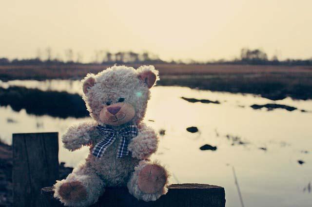 сказка про медвежонка Тедди